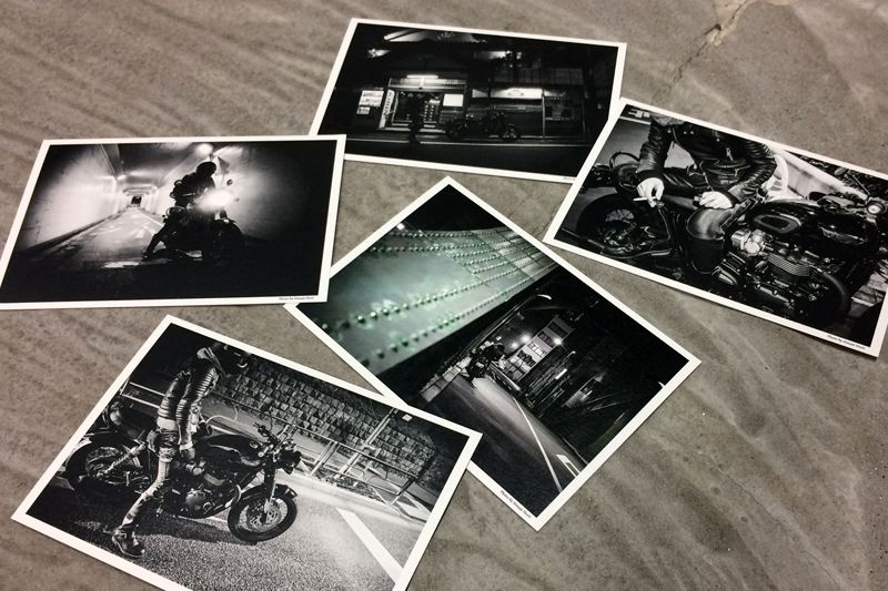 ★Triumph(トライアンフ) ロアーズ オリジナル・ポストカードプレゼント